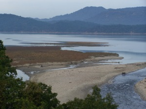 The Ramganga River flowing through Corbett National Park