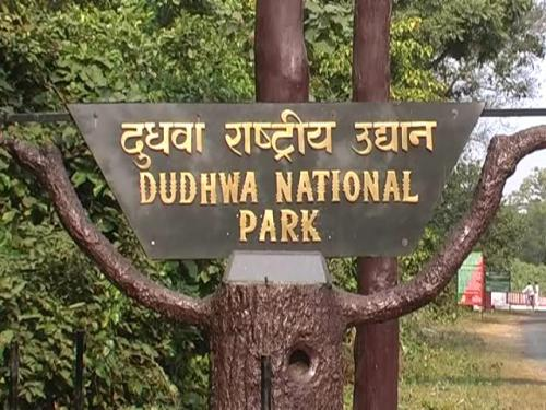 Image result for dudhwa national park gate